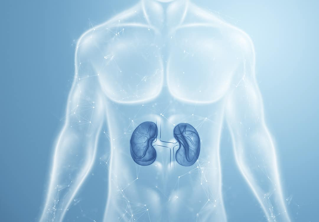 Câncer nos Rins e Cirurgia Robótica